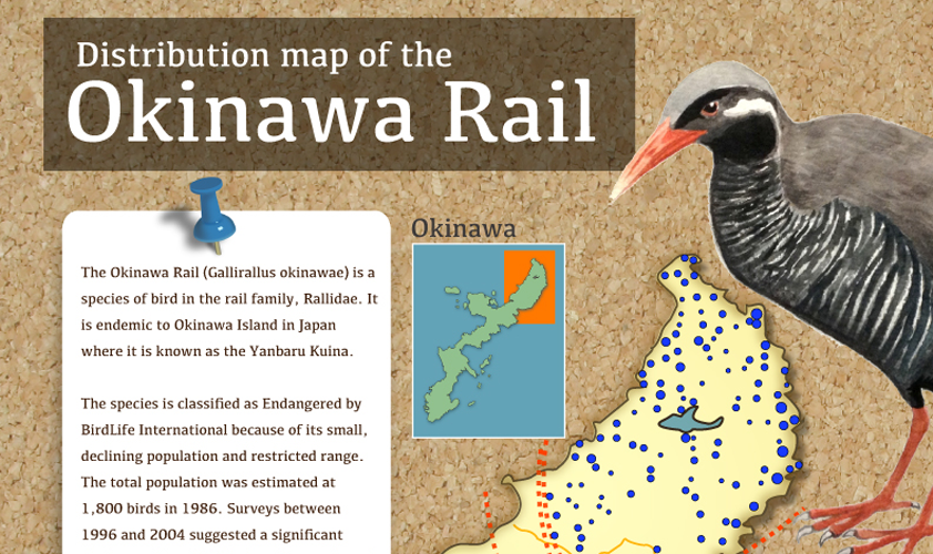 Okinawa Rail (Watercolor and Photoshop, 2012)